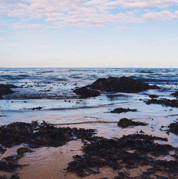 Tyninghame Beach - Scotland