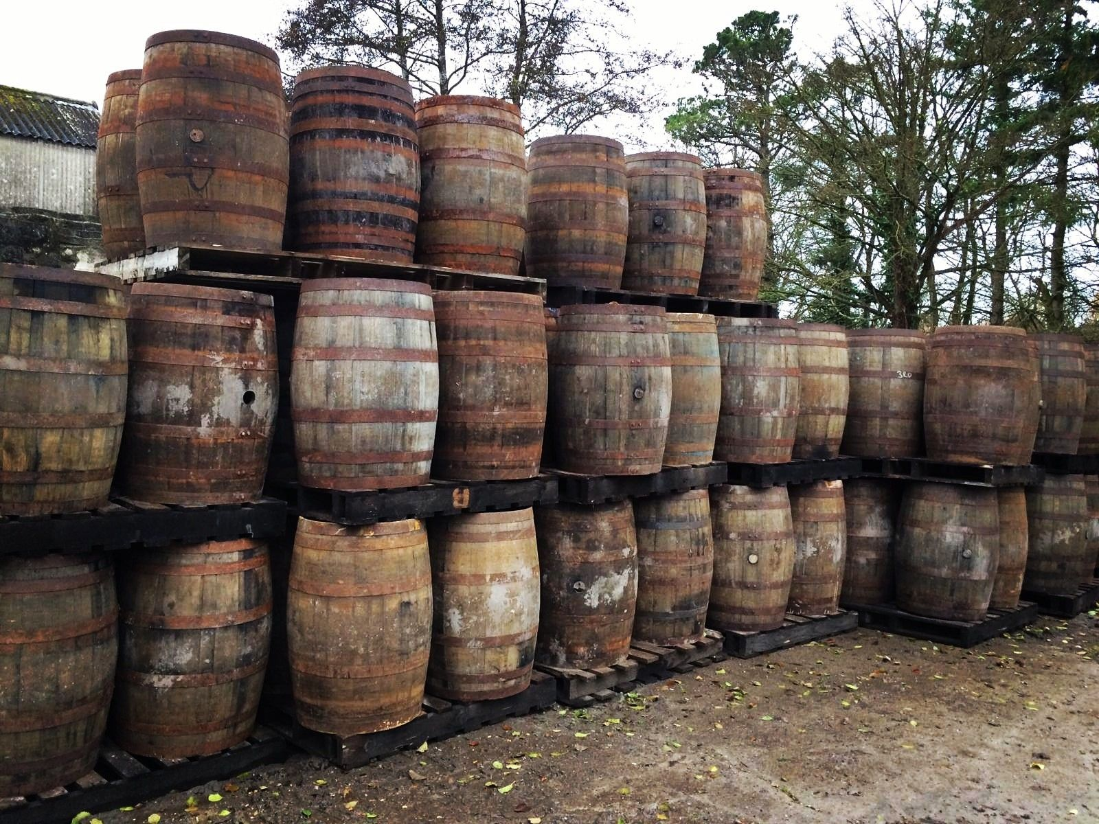 Home Barrels for sale, Whiskey barrels for sale, Irish
