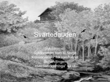 """Svartedauden Sykdommen Sykdommen kom til Norge Konsekvenser for samfunnet Behandlingen Hvordan """"kjerringa"""" så ut."""