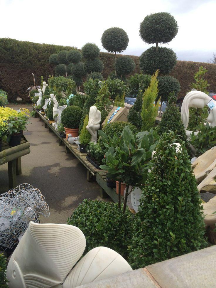 Garden Centre: Garden Centre