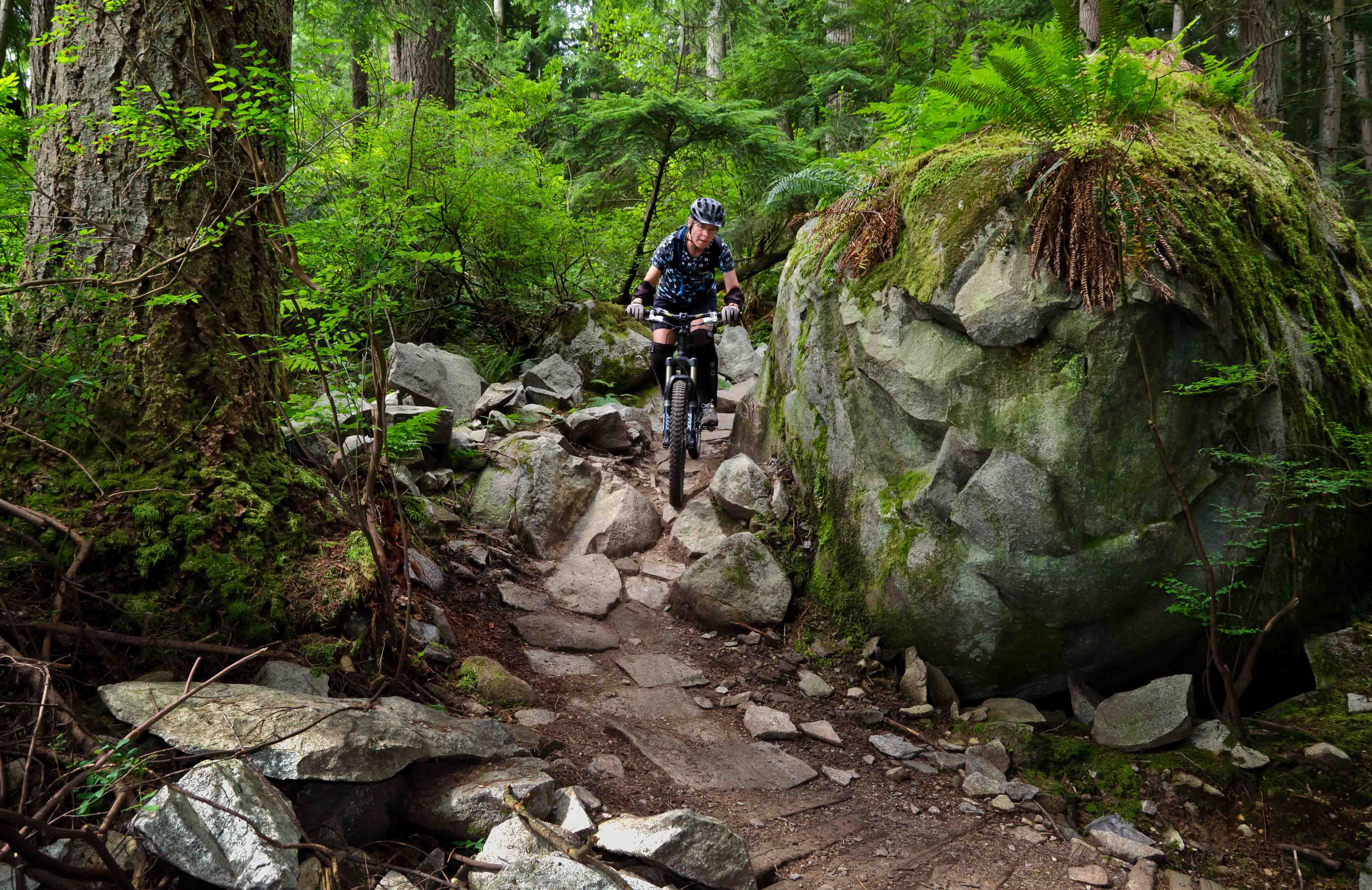 Mountain Biking Mt Seymour Bridle Path And Sticks And Stones