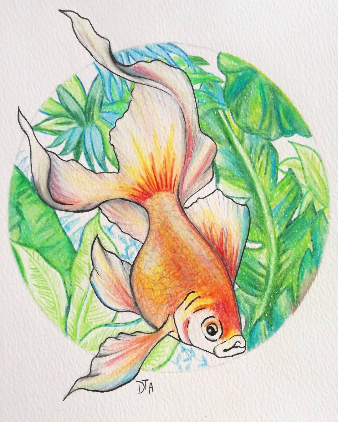 Goldfish Illustration. 88 Likes, 11 Comments - DEMIZ ...