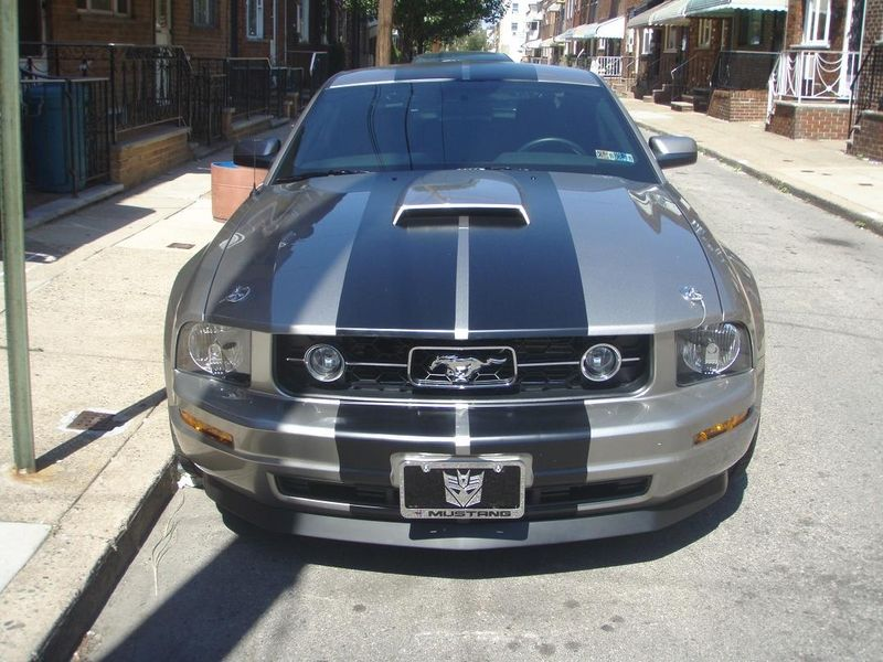 2008 Ford Mustang V6 Pony Package Coupe Pictures 2008 Ford