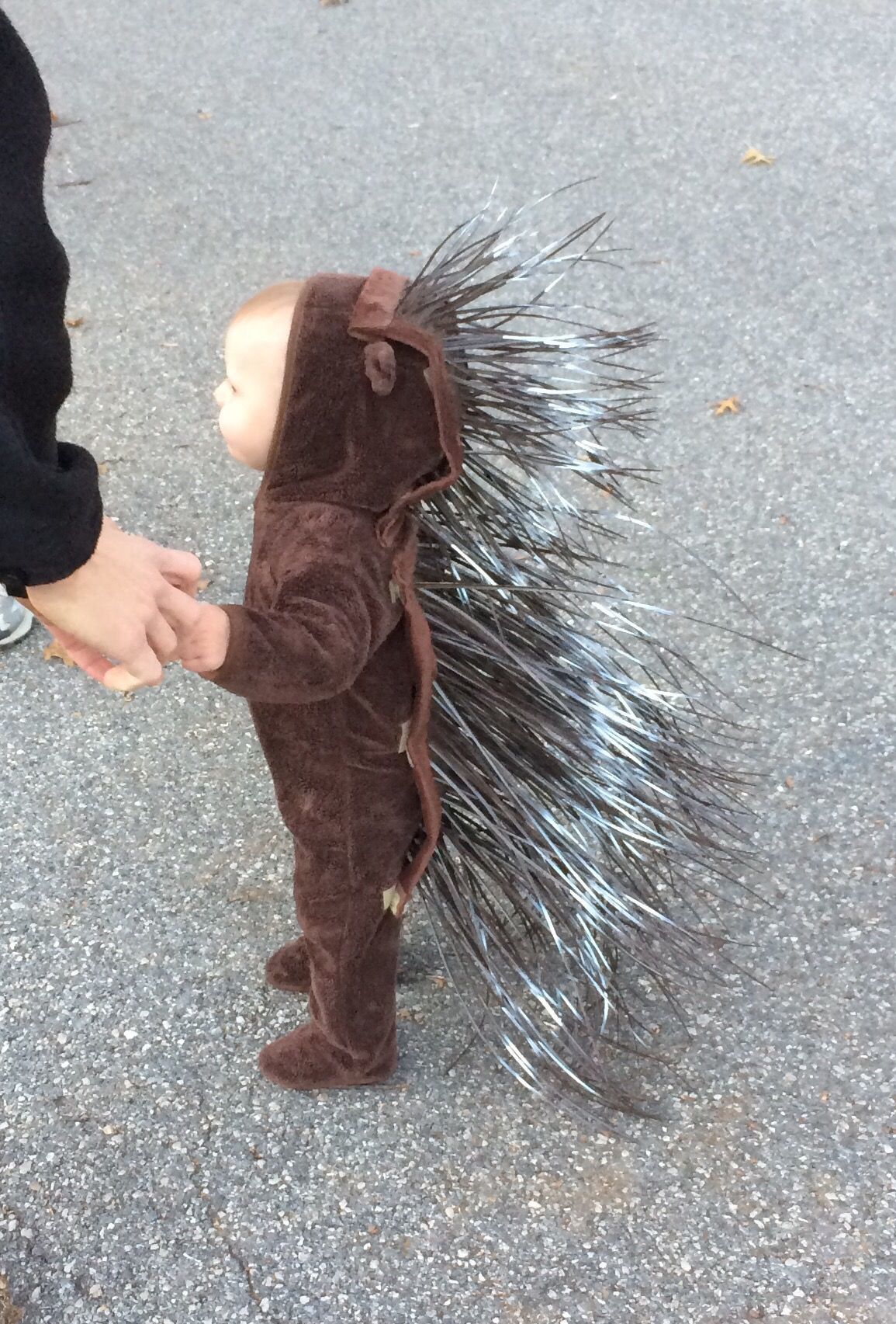 The Toddler's Halloween Costume: Porcupine #toddlerhalloween