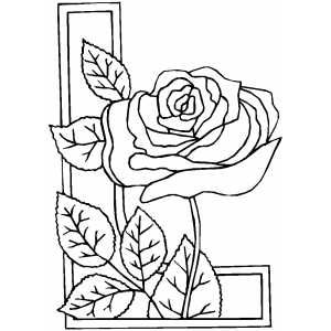 Rose Border Coloring Pinterest Drawing practice