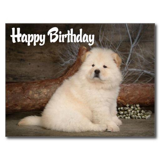 Happy Birthday Chow Chow Puppy Dog Postcard Zazzle Com Dogs