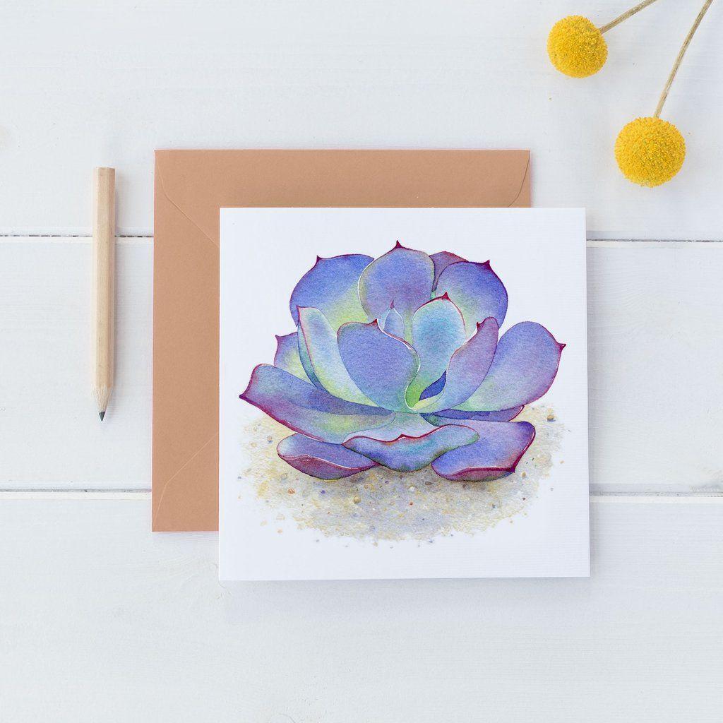 Blue Succulent Watercolor Square Card Dogpatch Studio Cards Shop