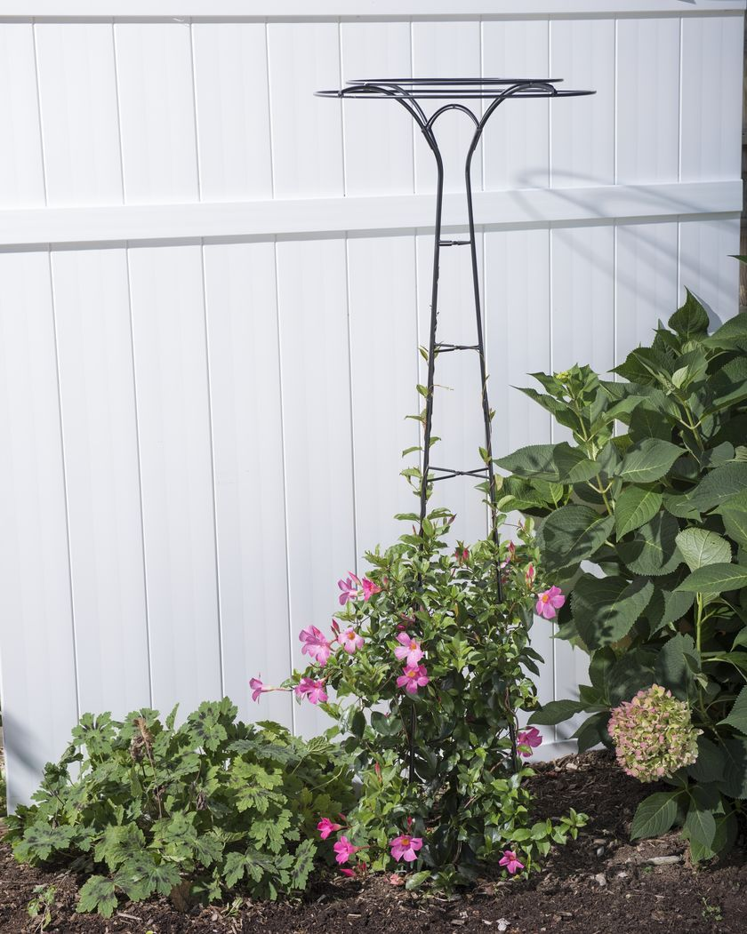 essex tuteur 63 umbrella shaped metal trellis garden tuteur