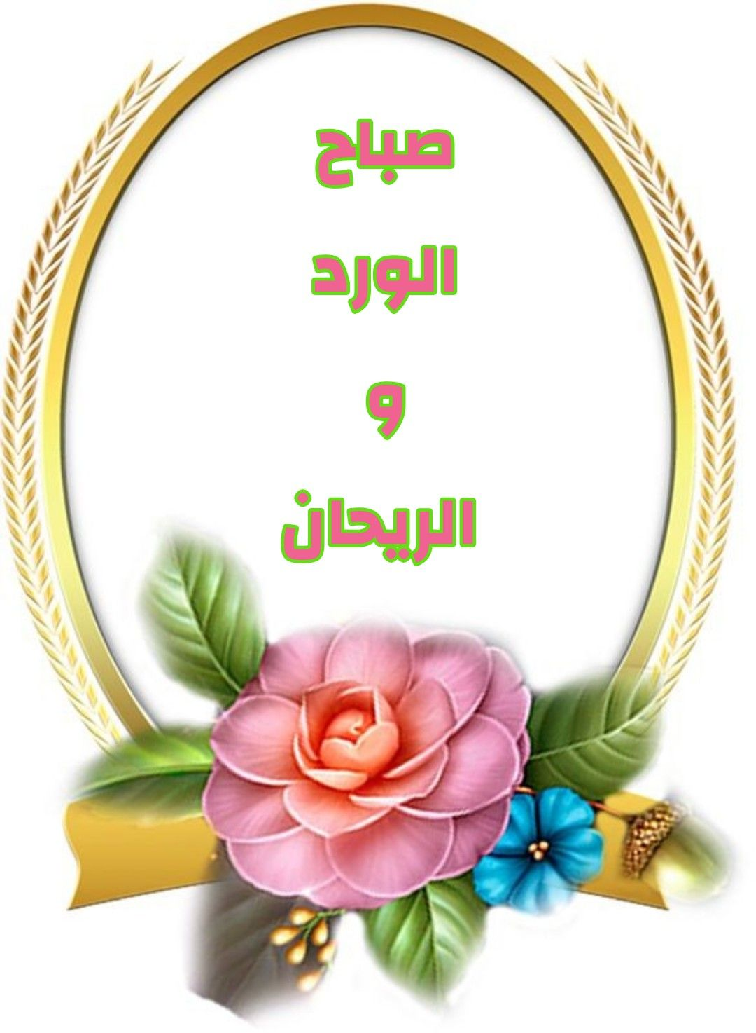 Pin By Mukhtar El Sawadi On صباح الخير صباح الورد Good Morning Messages Morning Messages Greetings