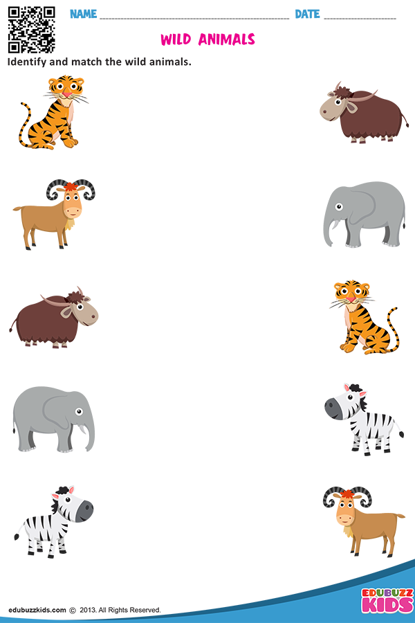 Useful for kids to identify the different kind of animals