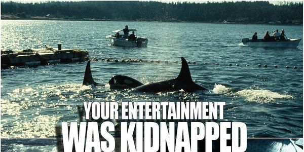 Hulu Please Stop Advertising For Seaworld Sign Petition