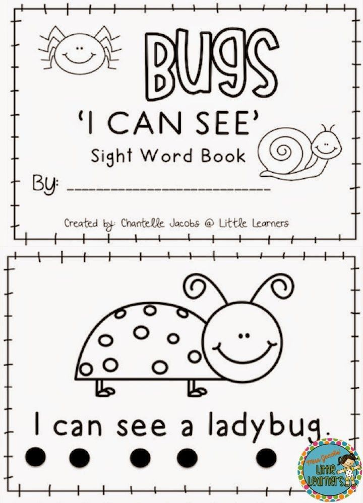 Bugs Galore: Literacy and Numeracy Pack: Miss Jacobs