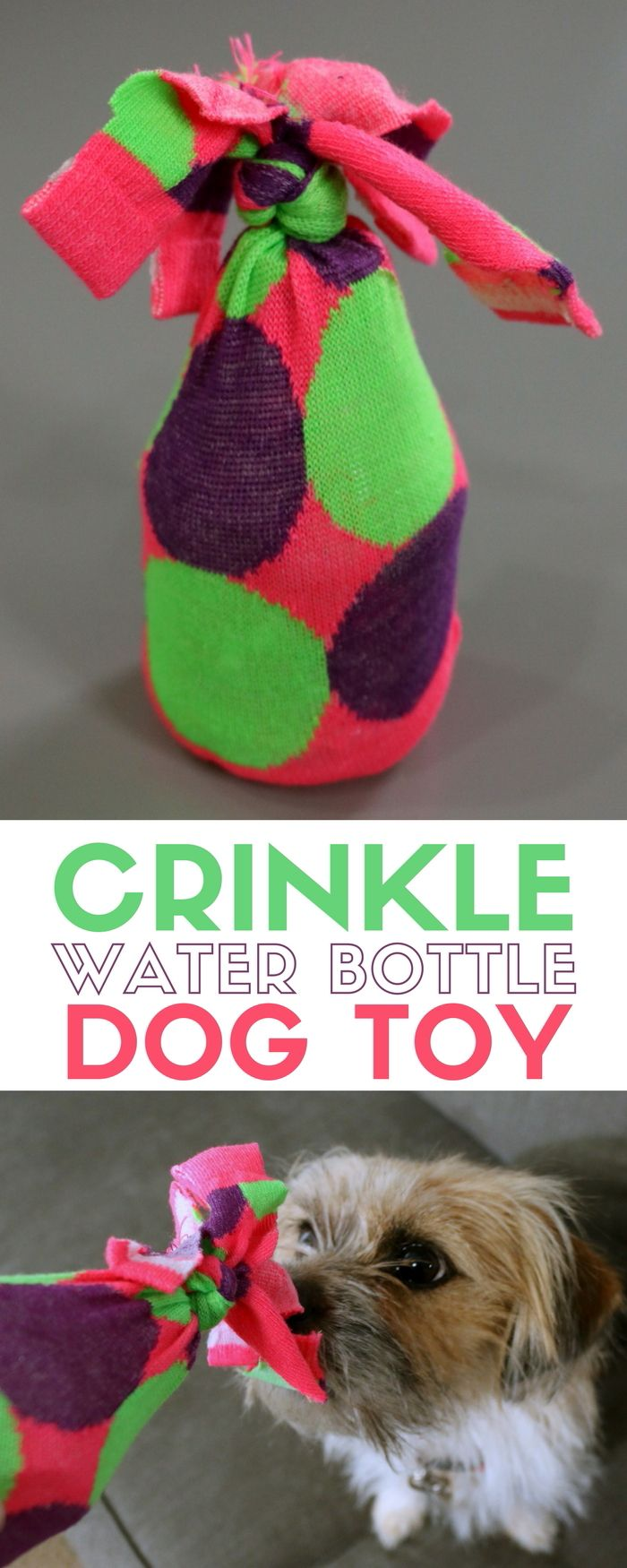 How To Make An Empty Water Bottle Dog Toy Cruncher Diy Dog Toys