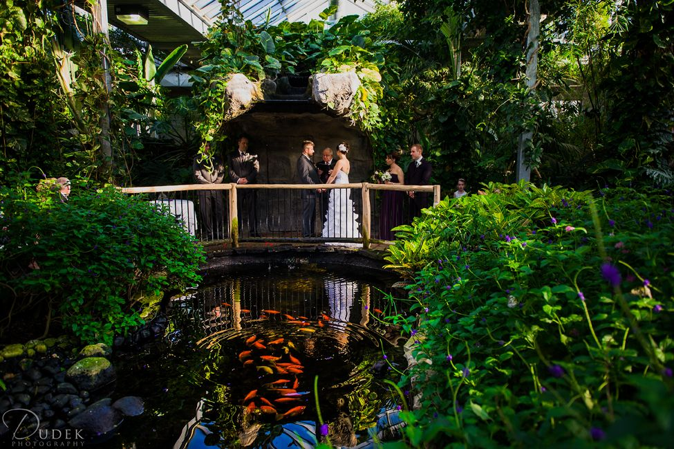 Experience The Elegant And Romantic Surroundings Of Cambridge Butterfly Conservatory Located In Ontario Venue Offers A Stunning Backdrop With