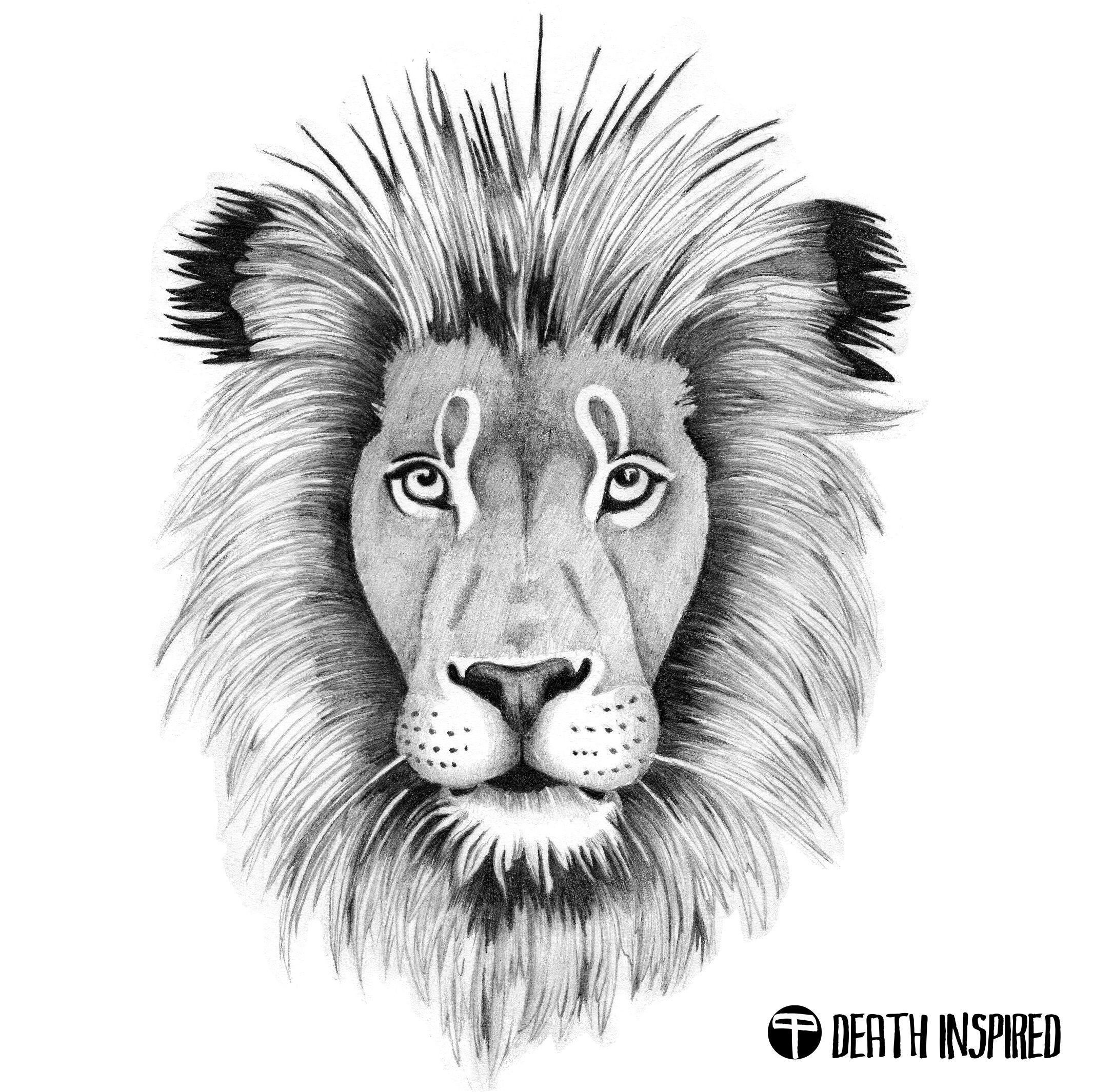 Pencil drawing of the lion head tattoo idea