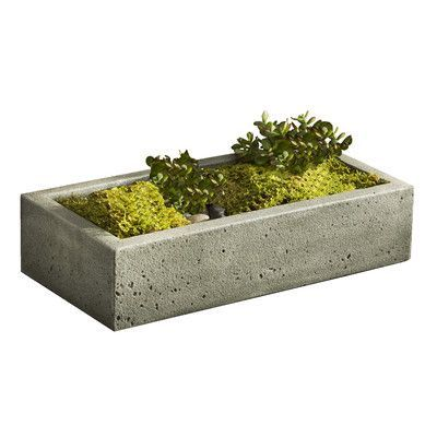 "Campania International, Inc Garden Terrace Rectangular Planter Box Finish: Verde, Size: 5"" H x 27"" W x 13"" D"