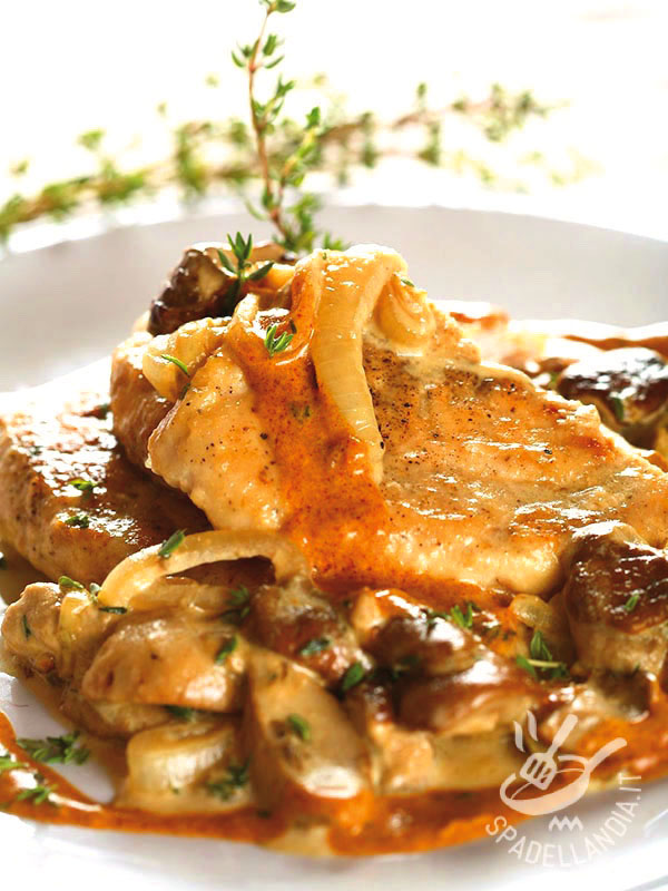 Photo of Chicken slices with porcini mushrooms and onions