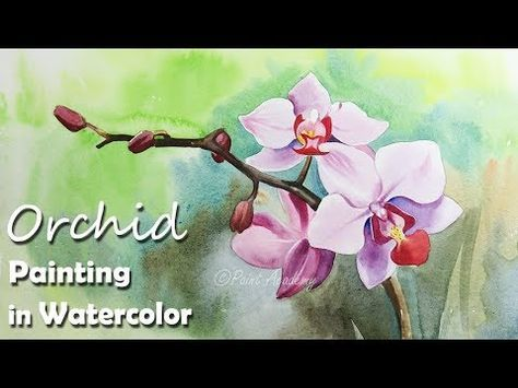 How To Paint Orchid Flower In Watercolor Youtube Aquarelle