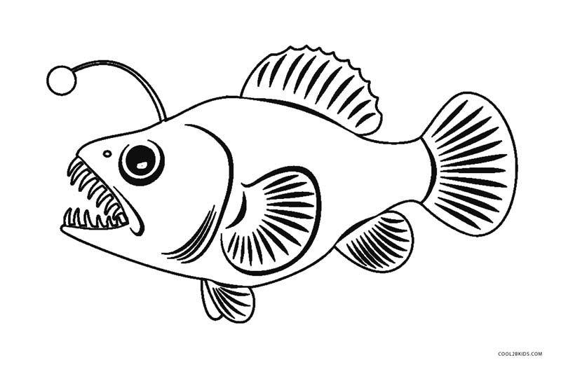 Angler Fish Coloring Page Jpg 800 524 Fish Coloring Page Free Coloring Pictures Rainbow Fish Coloring Page