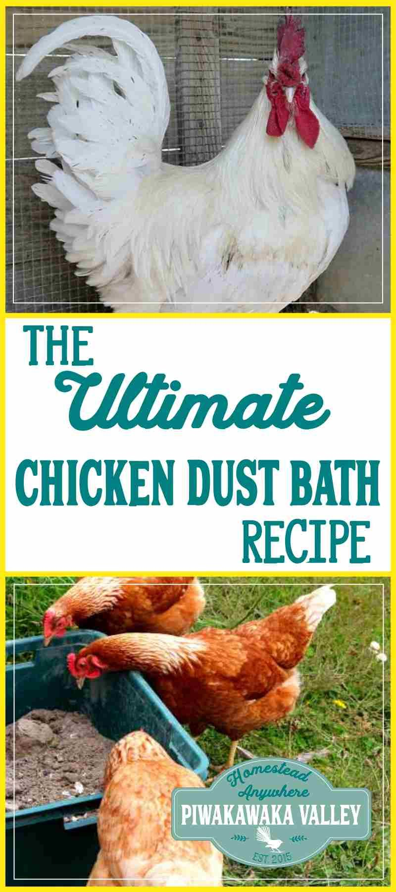 the ultimate chicken and rabbit dust bath recipe bath coops and