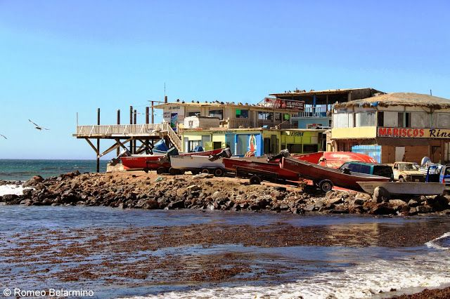 Baja california mexico food tour with club tengo hambre for Baja california fishing