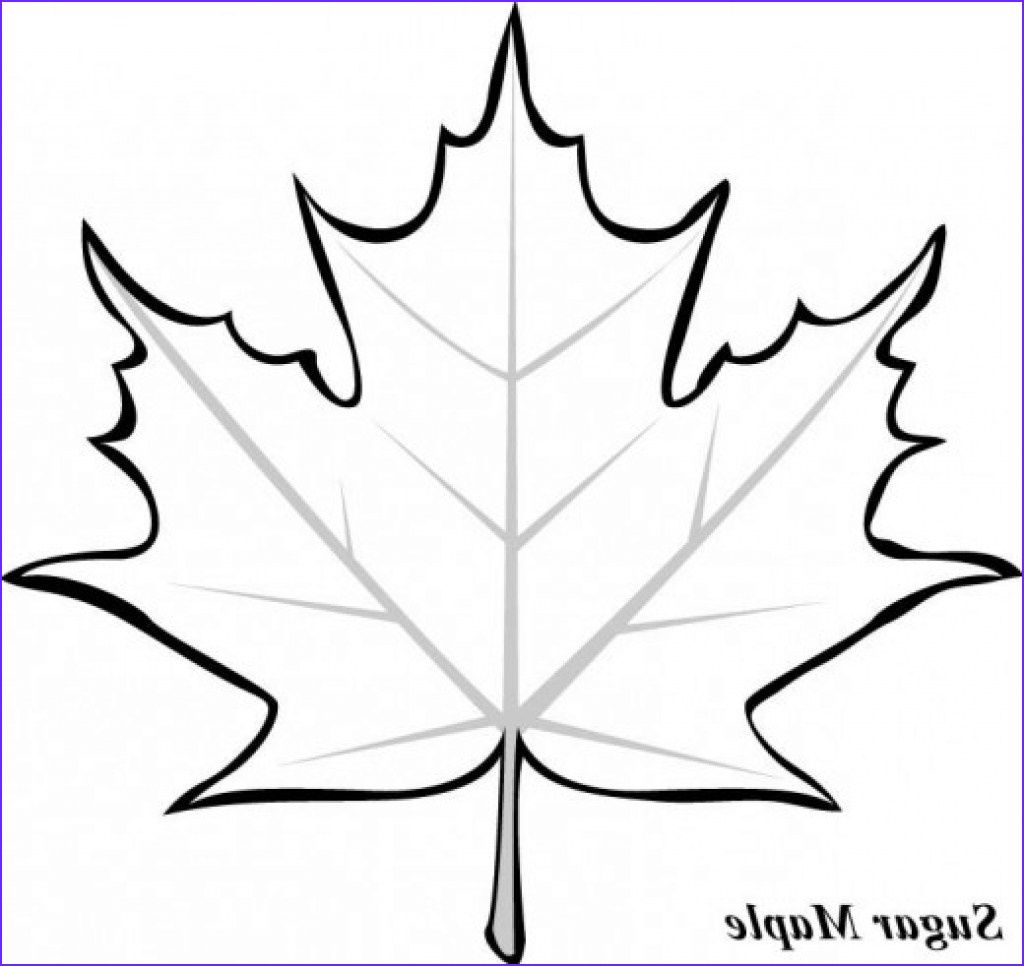 15 Inspirational Fall Leaves Coloring Pages Photos Leaf Coloring Page Fall Leaves Coloring Pages Leaf Template