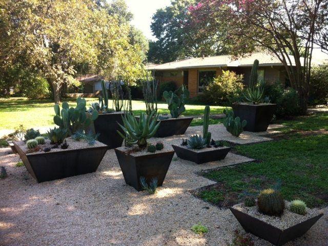 Steingarten mit kakteen-sukulenten Pflanzkübel-schwarz - pflanzgefase im garten ideen gestaltung