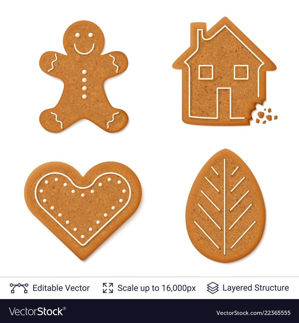 Gingerbread cookies isolated on white vector image on Пряник