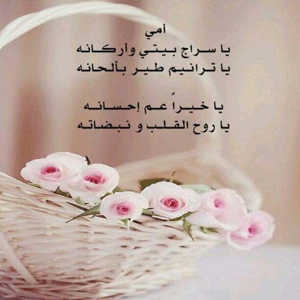 امي عيد الام الله يطول بعمرك و يديم عليكي الصحه Tableware