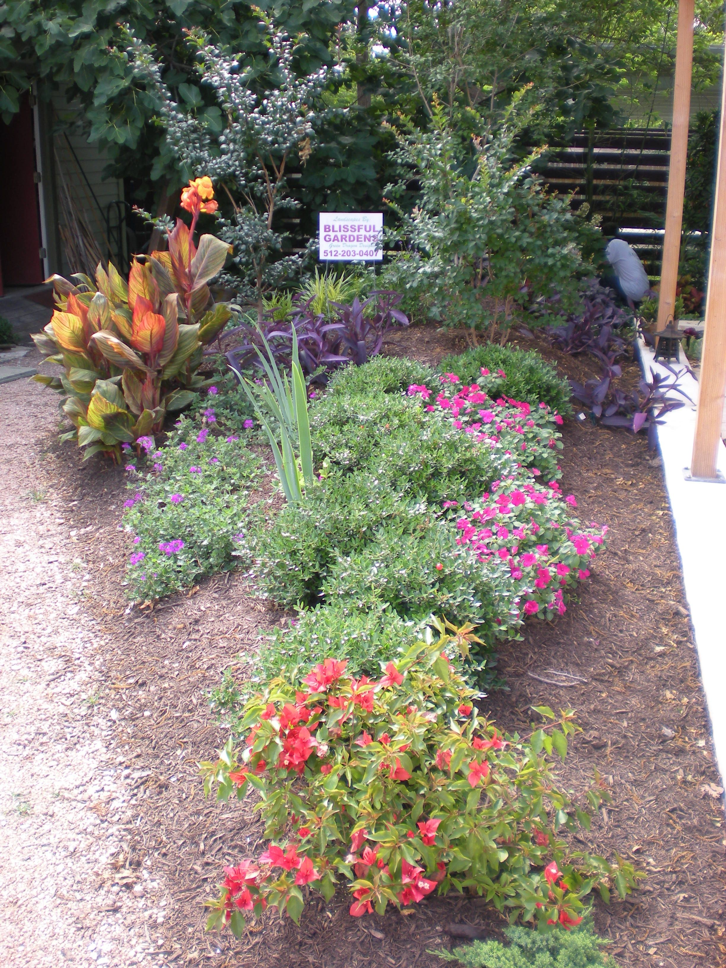 Central Texas Xeriscaping with Bill Rose from Blissful ...