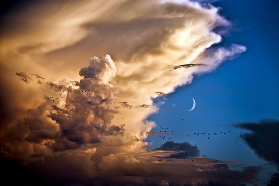 Pilviä, kuuta, venusta ja lintuja