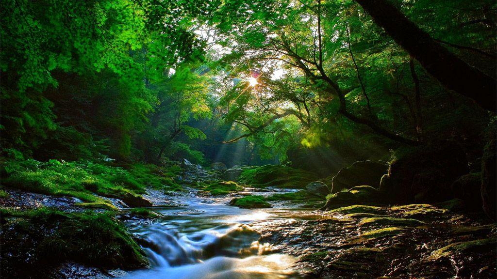 「風景 自然」の画像検索結果