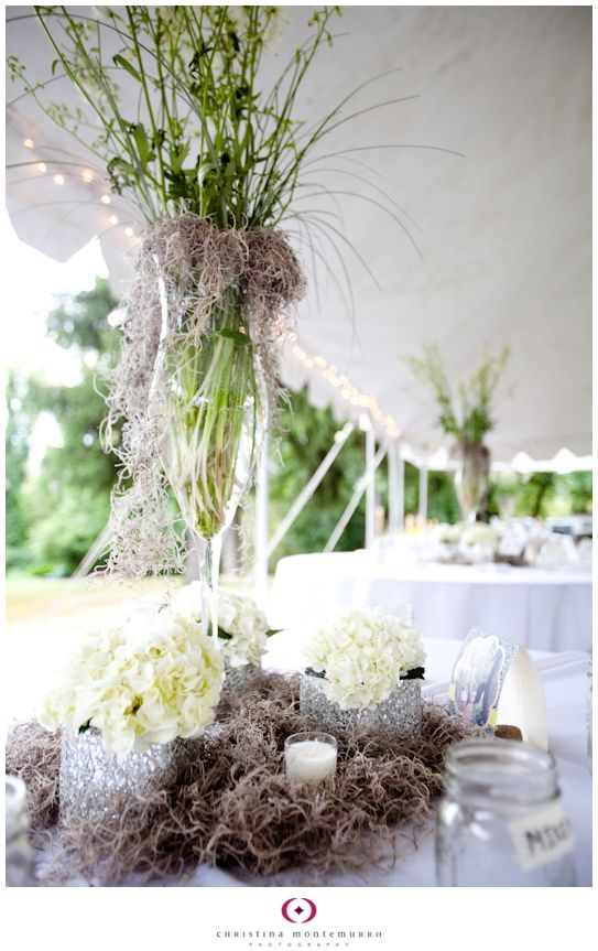 Spanish Moss Used In Floral Arrangement Or For The Center Pieces Or
