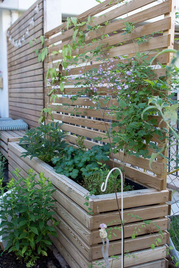 Meine Garten Bepflanzung