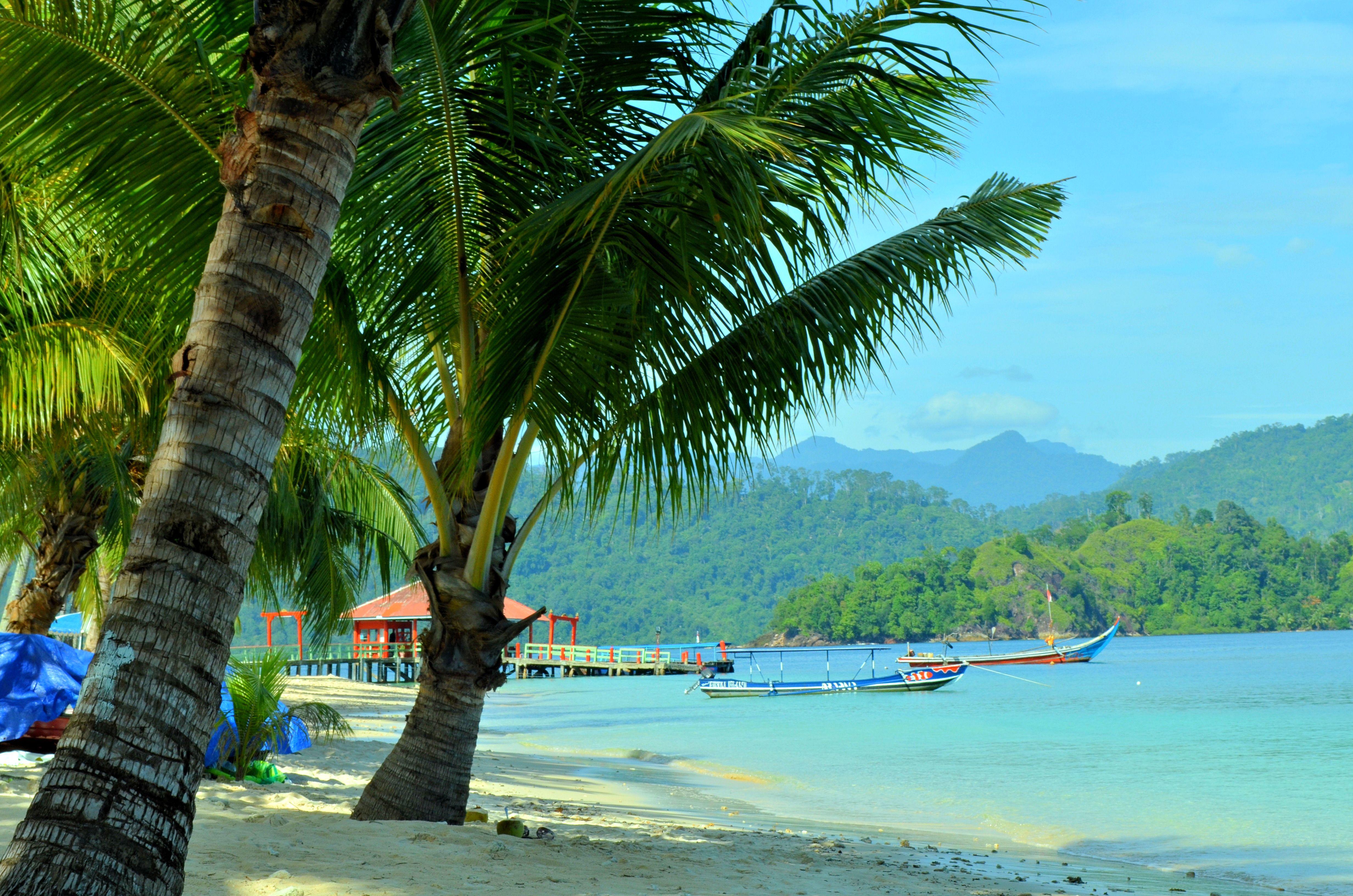 Tahiti Ari Love Sick
