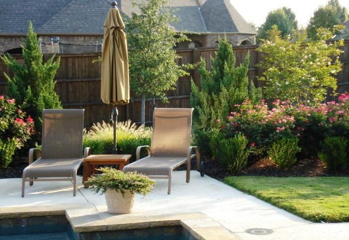 Allscapes Inc Irrigation Sprinklers Landscape Colleyville Texas Privacy Landscaping Grape Growing Trellis Growing Plants