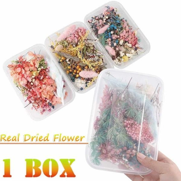 1 Box Real Dried Flower Dry Plants for Aromatherapy Candle Epoxy Resin Pendant Necklace Jewelry Making Craft DIY Accessories #aromatherapycandles Box, flowersampplant, Flores, Joyería - 13 #aromatherapycandles