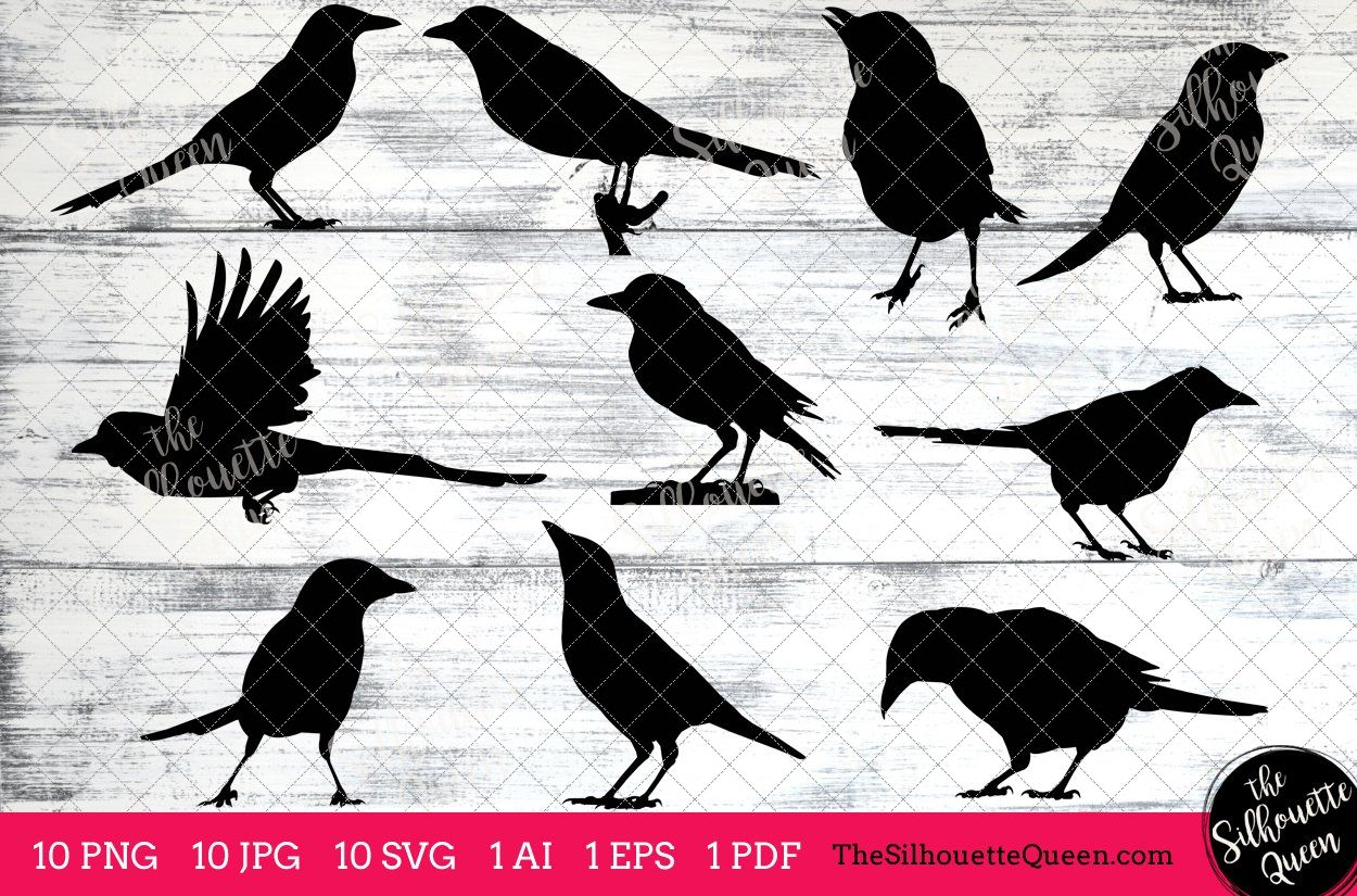 Magpie Silhouette Vector Graphics Silhouette vector