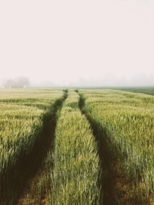 schoengeist : Foto #landscapepics