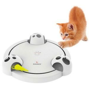 Having a pet is a big responsibility. They need to be fed, exercised, played with and cleaned up after. The 10 gadgets below will help you take care of your pet and save you some time too.Whistle The Whistle...