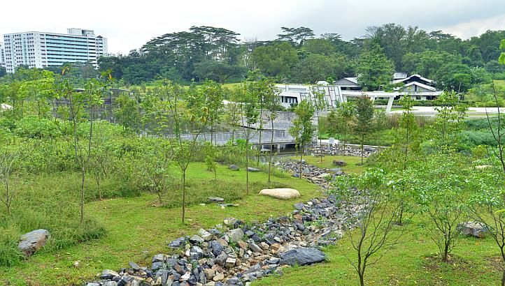 Jurong Eco-Garden in Singapore. http://www.straitstimes.com Photo: Lim Yaohui for The Straits Times