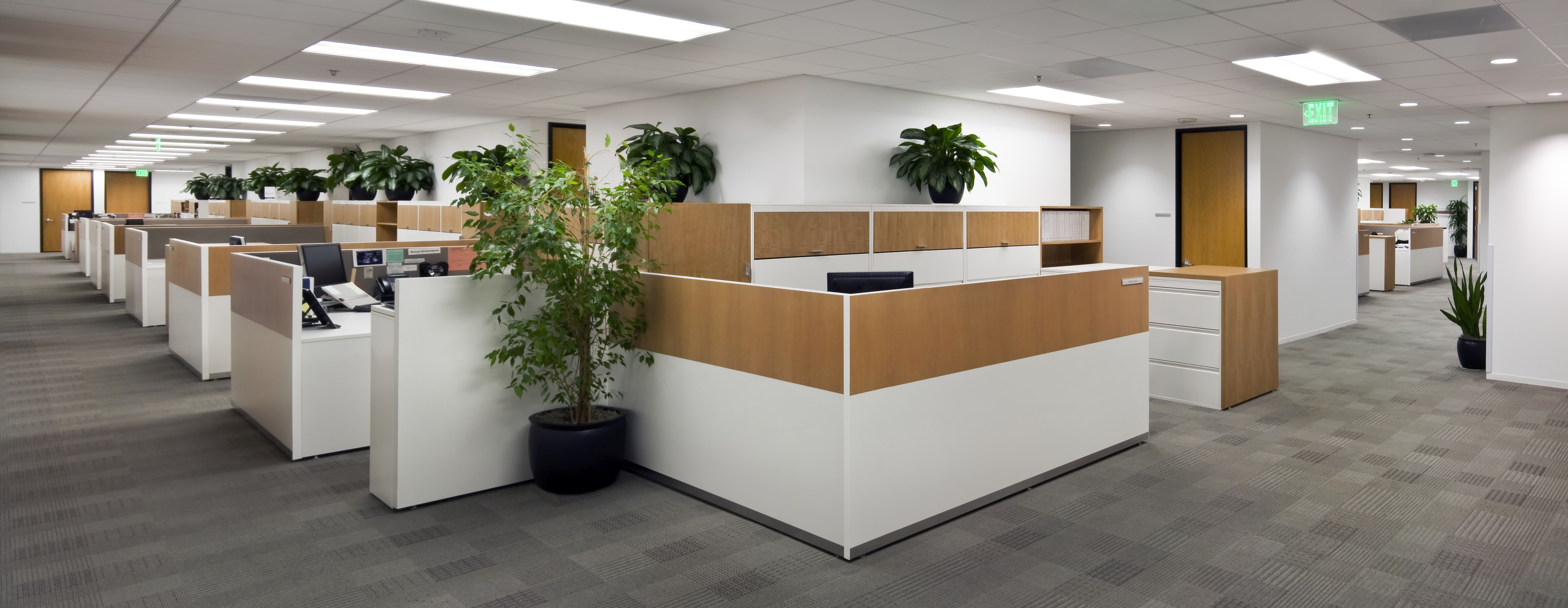 Panoramic view of a legal office Modern designed workstations