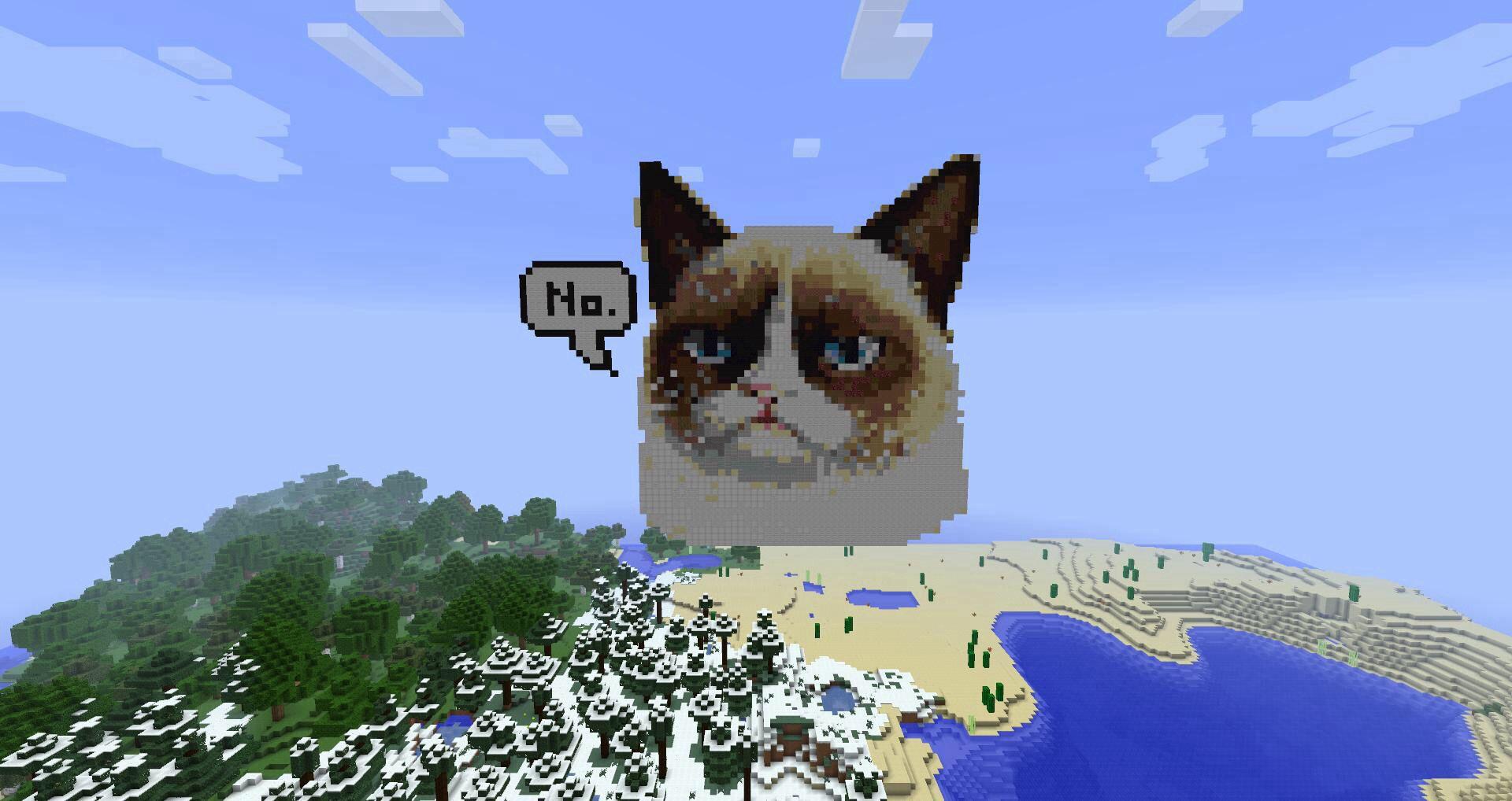 Фото кота в майнкрафте