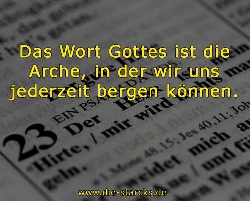 Das Wort Gottes ist die Arche, in der wir uns jederzeit bergen können. www.die-starcks.de