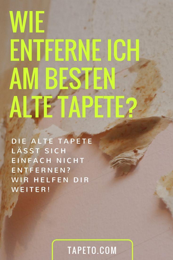 wie entferne ich am besten alte tapete? | wallpaper advice