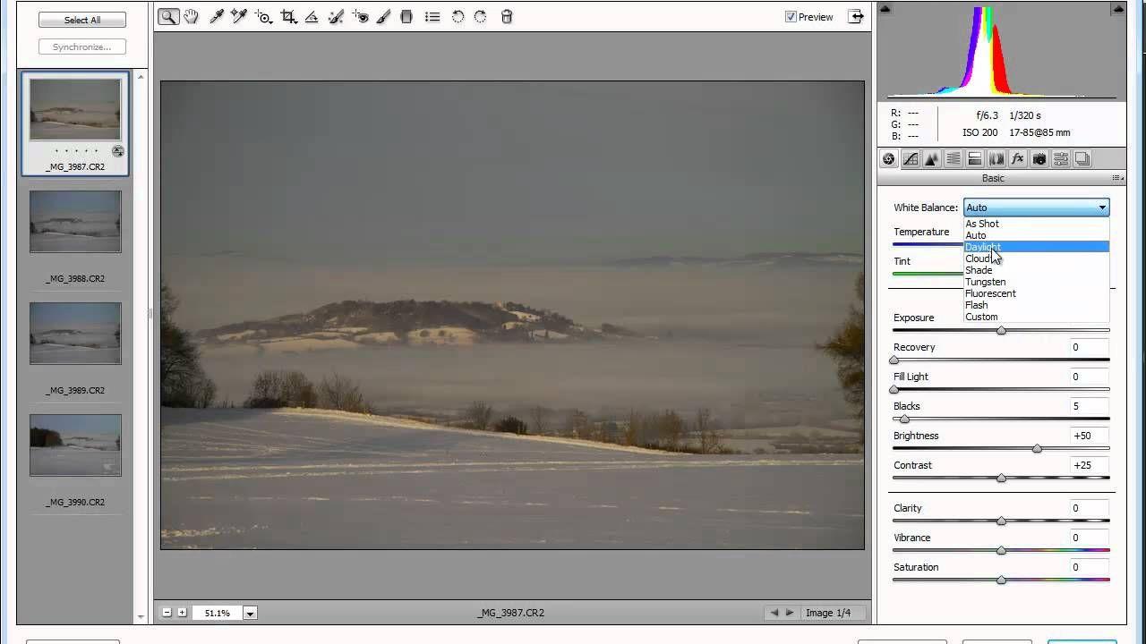 Edit Images with Adobe Bridge CS5 tuts, Image