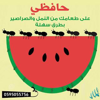 شركة الكمال اكبر بوابة للخدمات المنزلية فى السعودية 0595055756 شركة مكافحة حشرات بالجبيل 0595055756 شركة الكمال Alo