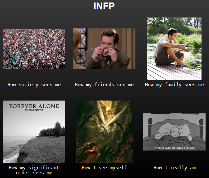 Haha This Is So Me Infp Personality With Images Infp
