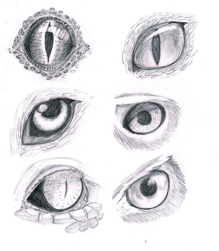 Coloring pages eyes - Eye Drawings