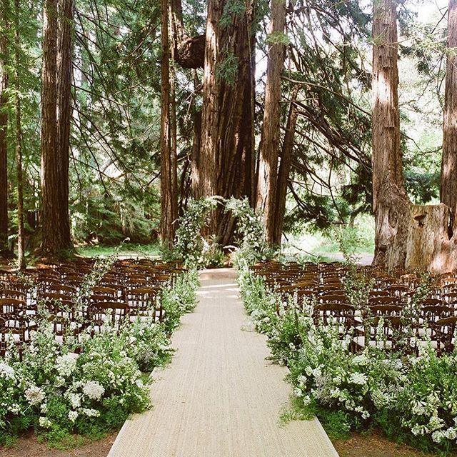 "Mindy Rice - Floral and Event Design on Instagram: ""..... after leaving the forest preserve, @"